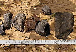 Possible coal and artillery shell fragments.
